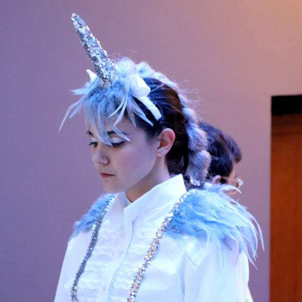 Unicorn & Snowflake