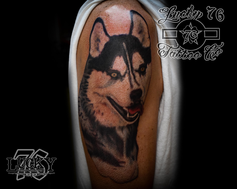 Husky Doggo