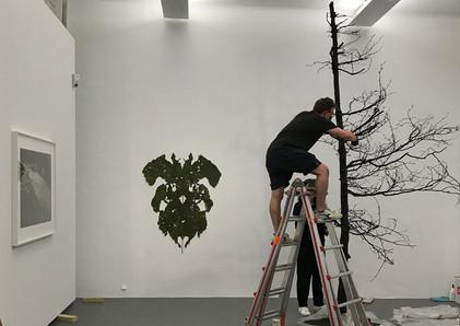Fragile Schöpfung: Aufbau dom museum