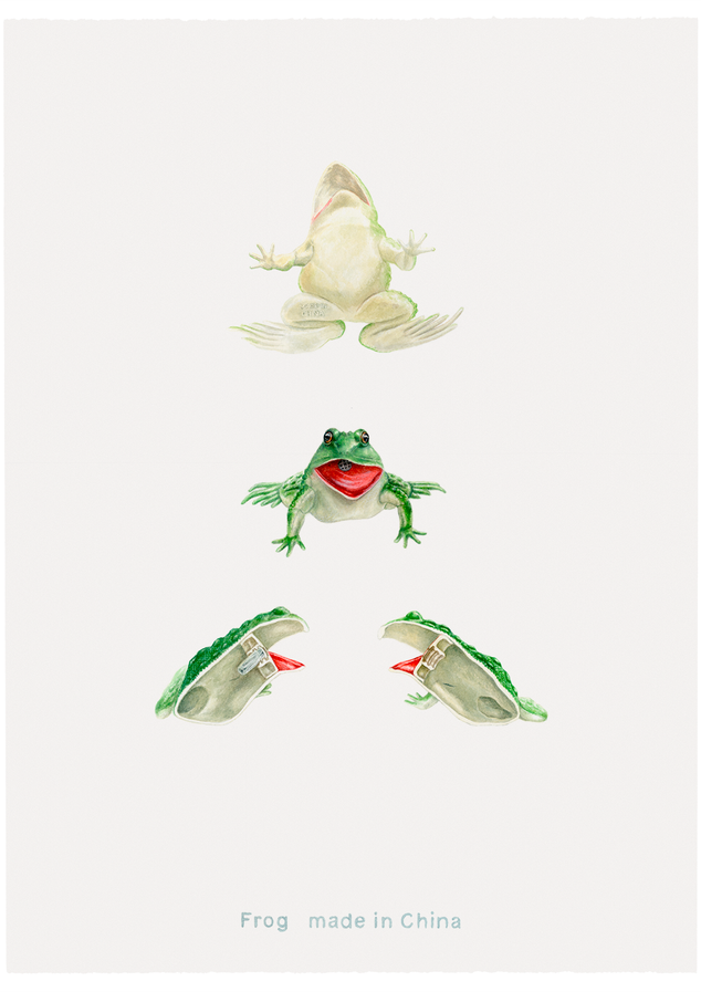 Frog made in China, 1999