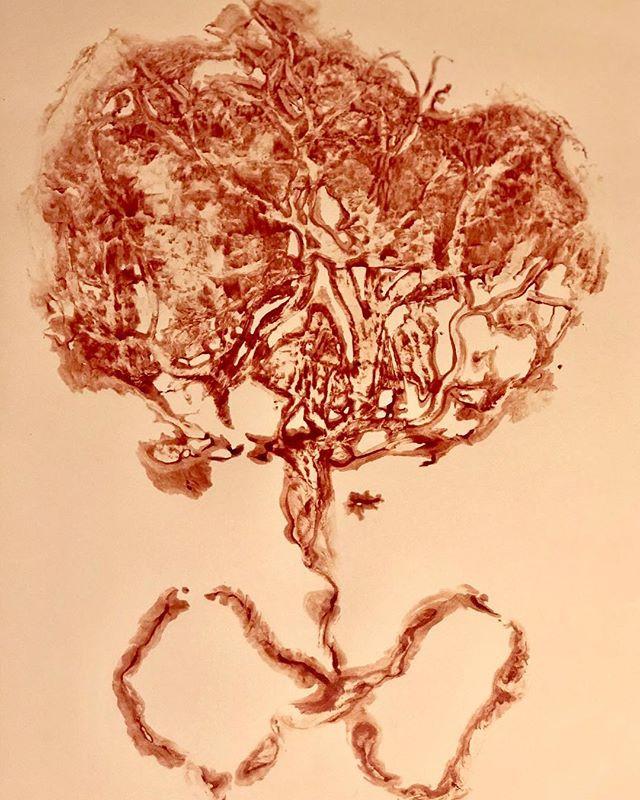 Placenta capsules orange