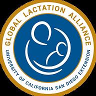 Postpartum doula lactation help