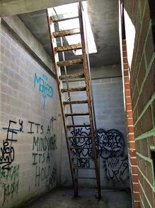 Abandoned Forest Haven Asylum Ladder