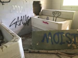 Abandoned Forest Haven Asylum Bath Tubs Graffiti