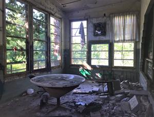 Abandoned Forest Haven Asylum