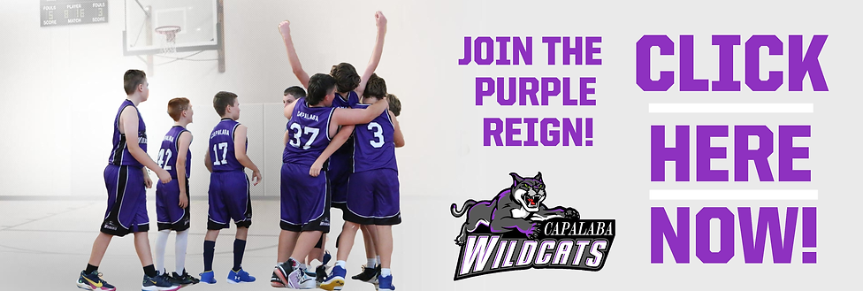 Wildcats Purple Reign Join Now.png
