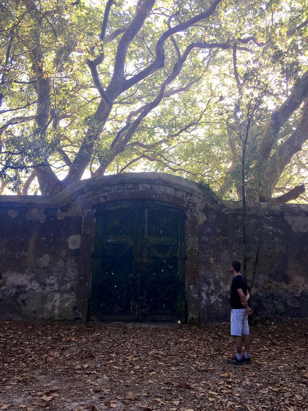 outono em portugal viver no interior pedablios