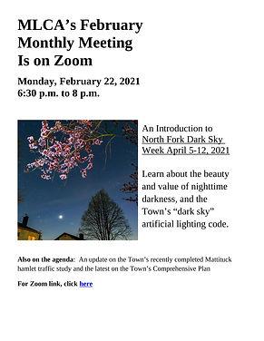 MLCA Feb meeting flyer w zoom.jpg