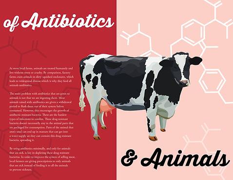 meat brochure print A4.jpg