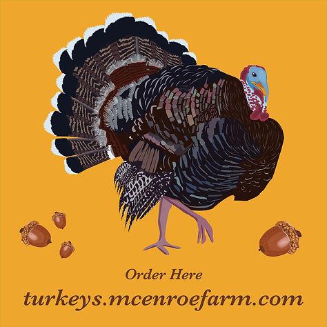 turkey insta acorn2.jpg