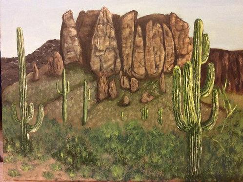 Superstition Cacti
