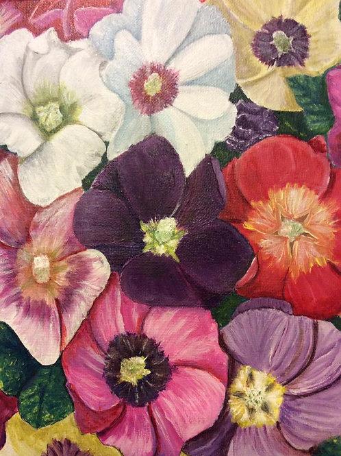 Colorful Anenomies