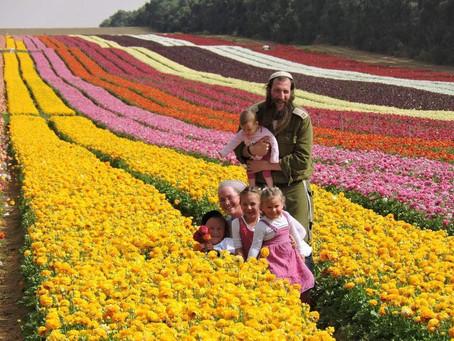 El judío, y el jardín