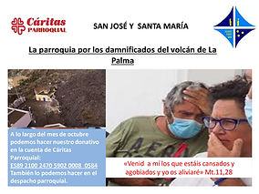 Cartel Campña de La Palma.jpg