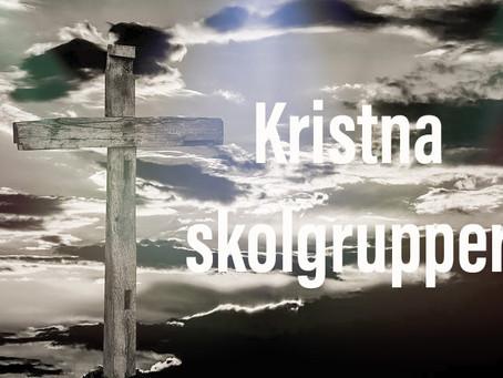 Krista Skolgrupper (KSG)