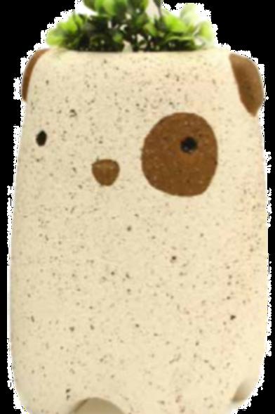 Urna Eco Bongo