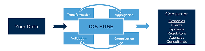 ICS_FUSE.png