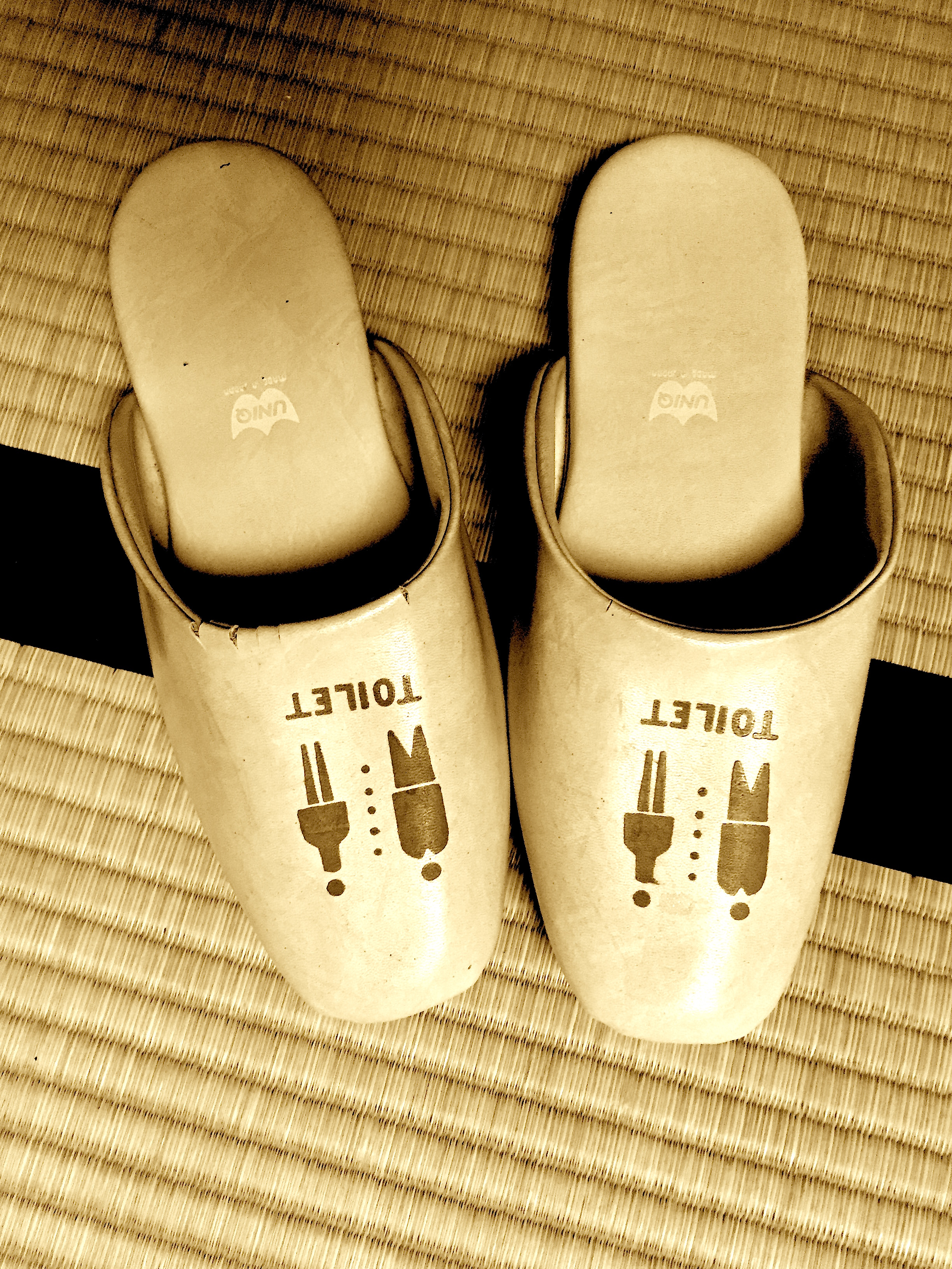 Kyoto Slippers