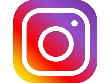 Grüne Echzell auf Instagram!