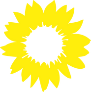 sonnenblume ohme hintergrund.png