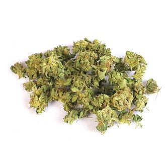 CBD Blüten Amnesia Haze 1g