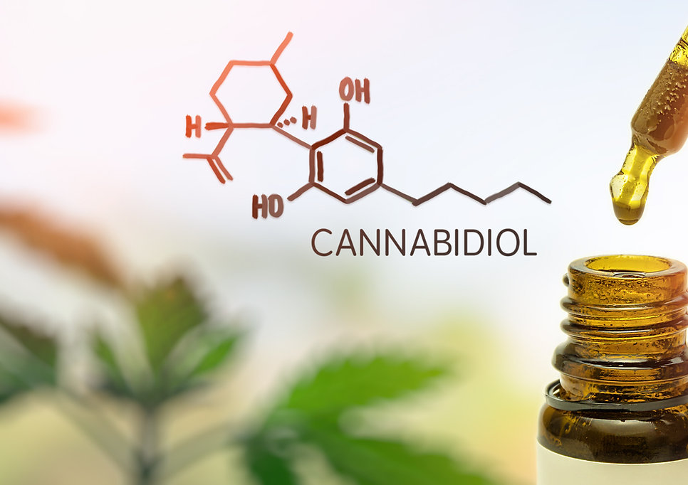 CBD Cannabidiol in pipette against Hemp