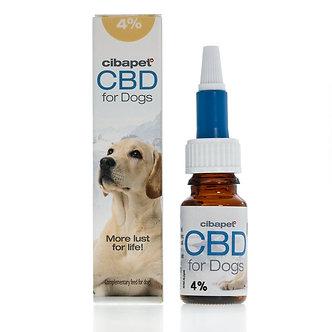 CBD Öl für Hunde 4% 10ml