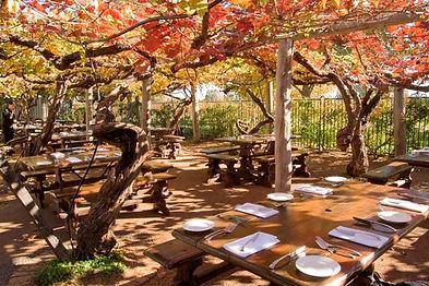 Sandalford Restaurant table vines.jpg