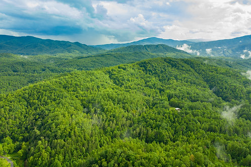 Your Getaway in the Trees! 6.44-acre in Cocke County, Tennessee - Close to Dougl