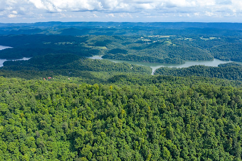 Beautiful 5.66-acre Outdoor Getaway in Claiborne, Tennessee! Explore Norris Lake