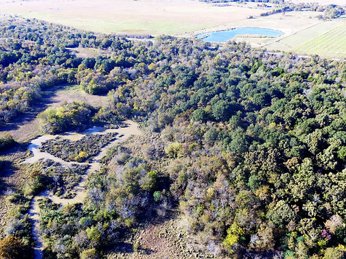 Bear Hunting, a Creek, and NO RESTRICTIONS! 10 Acres in OK – 100 miles to Tulsa!