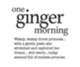 GINGER STORY.png