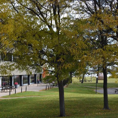 Cornwall Campus