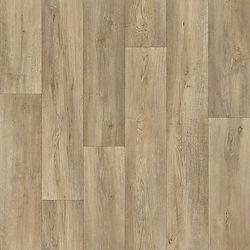 Silk Oak 639M.jpg