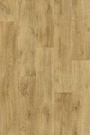Texas Oak 136L.jpg