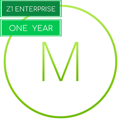 1 Year, Meraki Z1 Enterprise License and Support