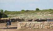 Viande de taureau Boucherie Sulauze