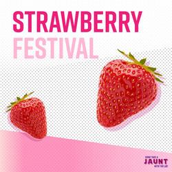 StrawberryFestivalWS