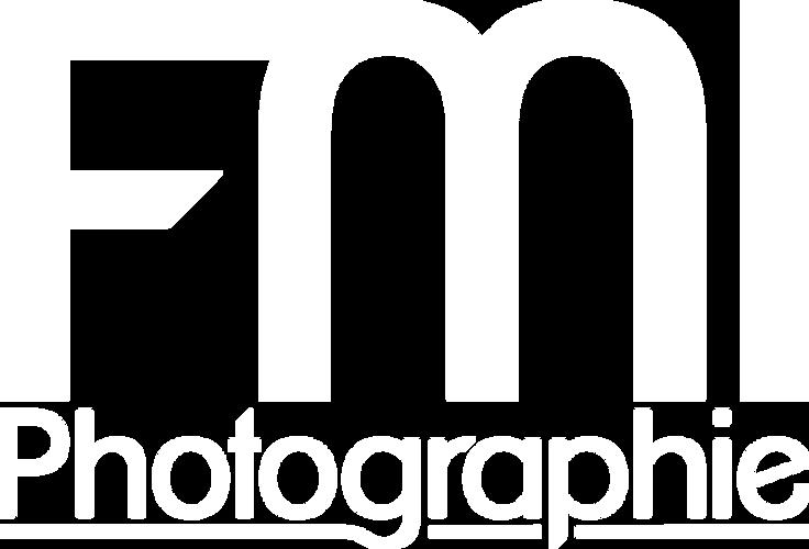 FMI-Logo für 2019