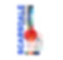 X SCAR - Web Ticket Horiz vs 1-01_edited