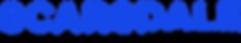 X SCAR - Main Web Header.png