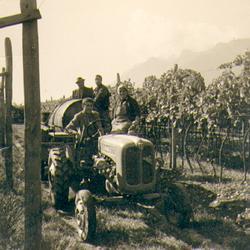 Weintransport