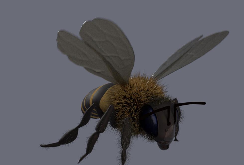 3D character model - honey bee