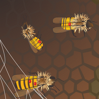 weak hive