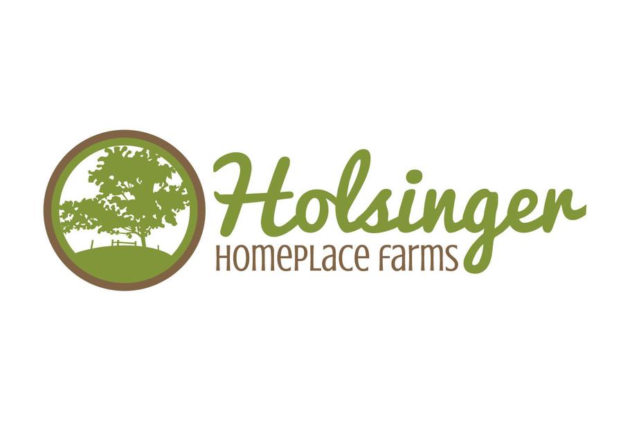 Holsinger Farms branding