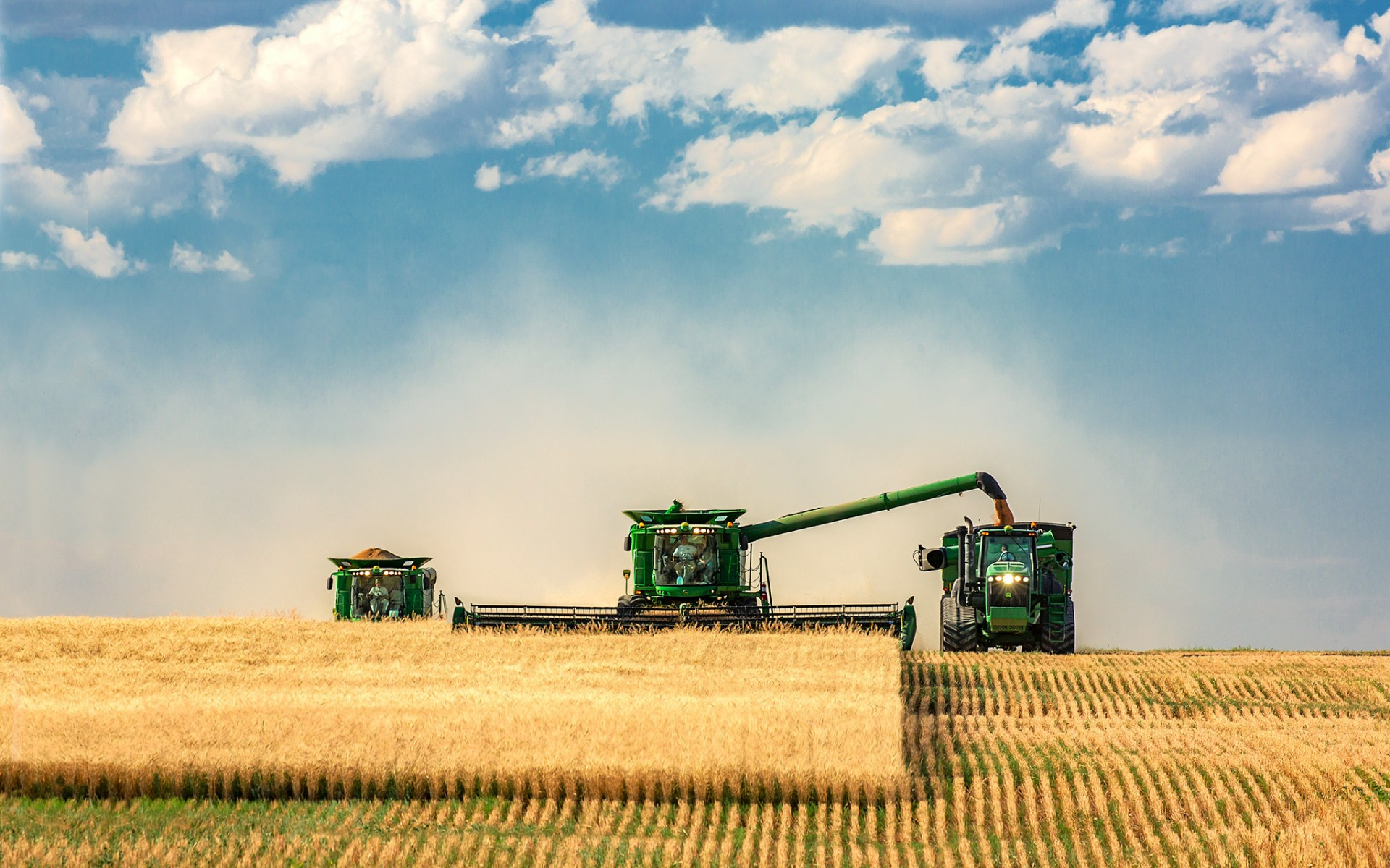 granja_cultivos_cosechadora_tractor_20160323_1139758059