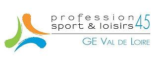 logo PSL GEVL.jpg