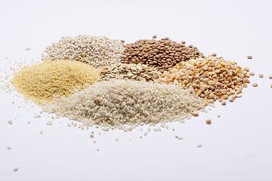 Feed samples shutterstock_156638393.jpg