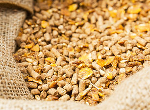 Feed in a bag shutterstock_105092750.jpg