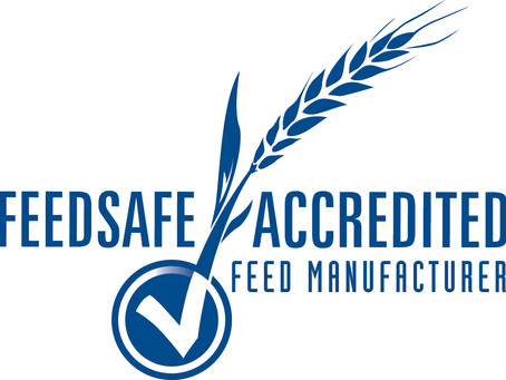 Launching the new FeedSafe Website